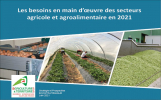 c2rp-ecostrategique-besoin-main-oeuvre-agricole-agroalimentaire.jpg