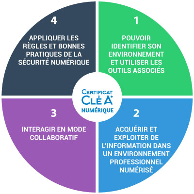 c2rp-c2dossier-illettrisme-domaines-clea-numerique.jpg